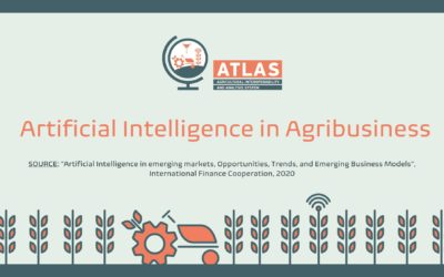 Artificial Intelligence in Agribusiness
