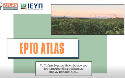 More ATLAS irrigation services under way in the Greek pilots